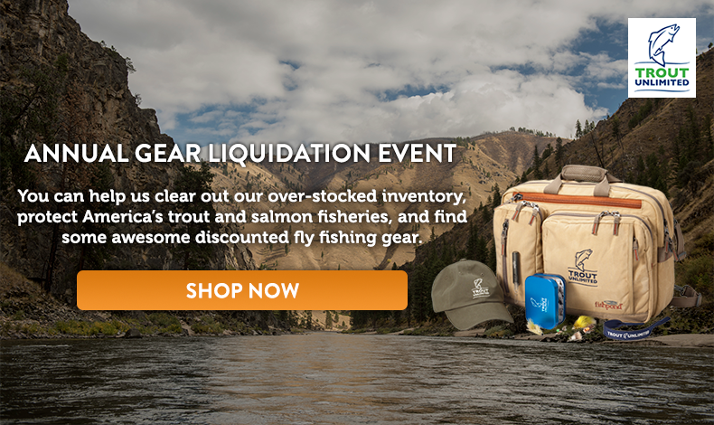 Annual Liquidation Event